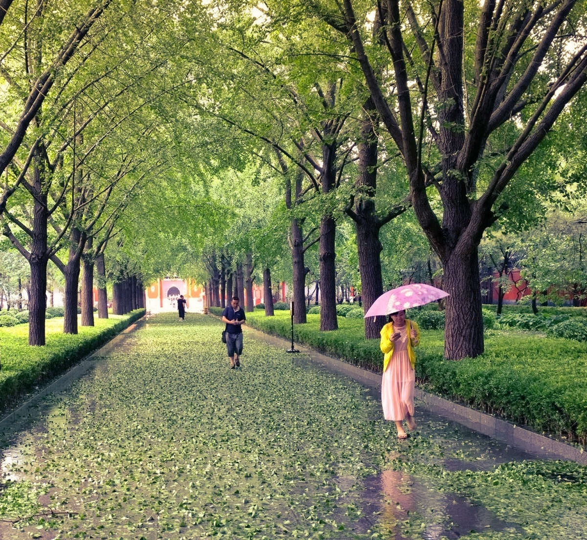 Bildergalerie: Beijing Bites