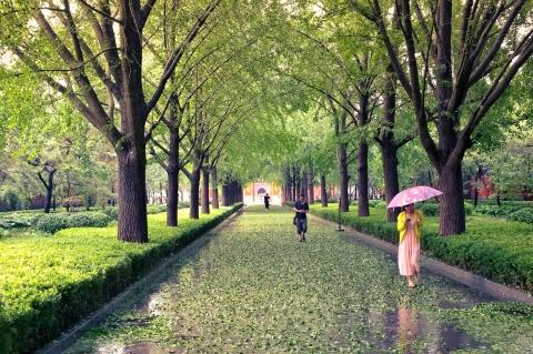 Ein Regen-Spaziergang im Lama-Tempel; Yonghegong Peking